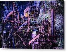 Lost In The Weeds Acrylic Print by Garry Gay