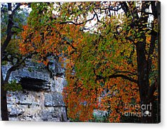 Fall Foliage At Lost Maples State Natural Area  Acrylic Print