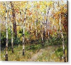 Lost Trail Found Acrylic Print by Bill Inman