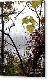 Acrylic Print featuring the photograph Lotor Lake by Jack R Brock