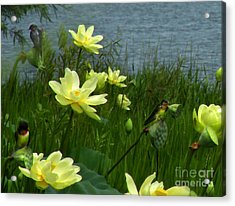 Acrylic Print featuring the photograph Lotus And Swallows by Deborah Smith