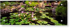 Lotus Blossoms, Japanese Garden Acrylic Print by Panoramic Images