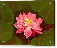 Lotus Flower Acrylic Print by Anastasiya Malakhova