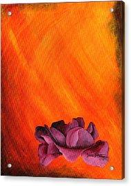 Lotus Rose Acrylic Print