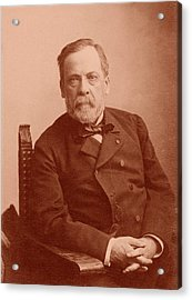 Louis Pasteur Acrylic Print by American Philosophical Society