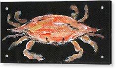 Louisiana Crab Acrylic Print by Katie Spicuzza