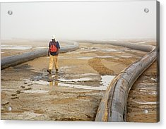 Louisiana Wetlands Restoration Project Acrylic Print