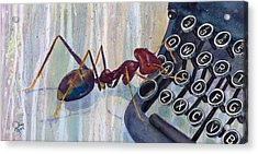 A Is For Ant Acrylic Print