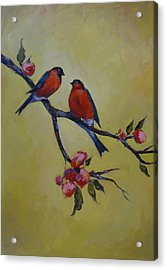 Love Birds Acrylic Print by Kelley Smith