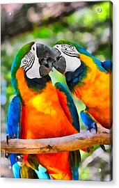 Love Bites - Parrots In Silver Springs Acrylic Print by Christine Till