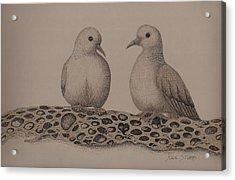Love Doves Acrylic Print