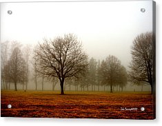 Love Foggy Mornings Acrylic Print