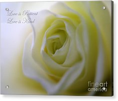 Love Is Patient Acrylic Print by Patti Whitten