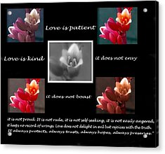Love Is Patient Acrylic Print by Ruth Jolly