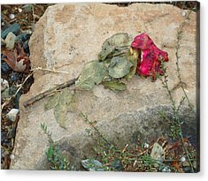 Love Lost Acrylic Print