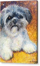 Love My Lhasa Acrylic Print by Laurie Morgan