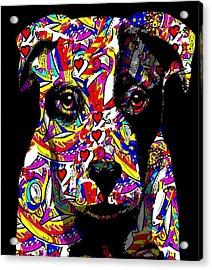 Love My Pup Acrylic Print by Cindy Edwards