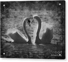 Love... Acrylic Print