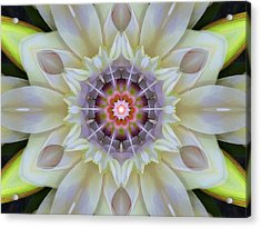 Love Star Flower Mandala Acrylic Print