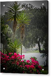Love The Rain  Acrylic Print