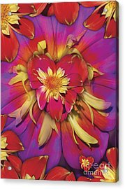 Loveflower Orangered Acrylic Print