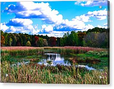 Lovely Day Acrylic Print by Michelle and John Ressler