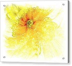 Lovely Lemon Acrylic Print