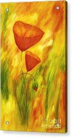 Lovely Poppies Acrylic Print by Veikko Suikkanen
