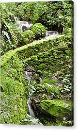 Lovely Waterfall Acrylic Print