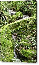 Lovely Waterfall Acrylic Print