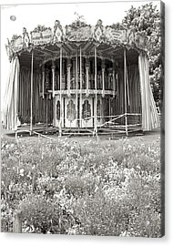 Acrylic Print featuring the photograph Lovers Carousel by Colleen Williams