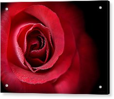 Love's Eternal Red Rose  Acrylic Print by Jennie Marie Schell