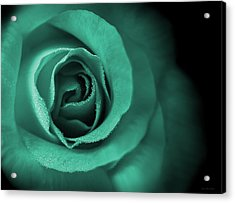 Love's Eternal Teal Green Rose Acrylic Print by Jennie Marie Schell