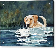 Loves The Water Acrylic Print by Marilyn Jacobson