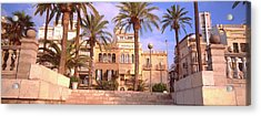 Low Angle View Of Palm Trees Acrylic Print