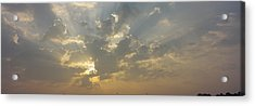 Low Angle View Of Sun Shinning Acrylic Print by Panoramic Images