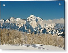 Low Clouds And Aspen Trees In Front Acrylic Print