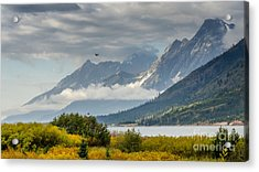 Low Clouds On The Teton Mountains Acrylic Print by Debra Martz