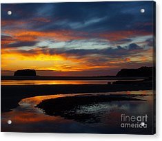Acrylic Print featuring the photograph Low Tide At Sunrise by Trena Mara