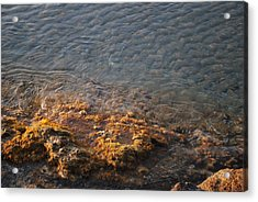 Acrylic Print featuring the photograph Low Tide by George Katechis