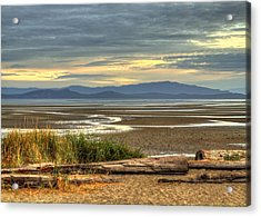 Low Tide Acrylic Print by Randy Hall