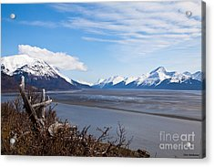 Low Tide Turnagain Arm Acrylic Print by Chris Heitstuman