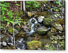 Lowell Mountain Stream Acrylic Print by John Nielsen
