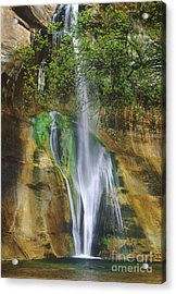 Acrylic Print featuring the photograph Lower Calf Creek Falls Escalante Grand Staircase National Monument Utah by Dave Welling