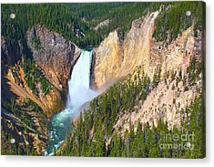Acrylic Print featuring the photograph Lower Falls Yellowstone 2 by Teresa Zieba