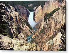 Acrylic Print featuring the photograph Lower Falls Yellowstone by Teresa Zieba