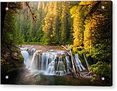 Lower Lewis River Falls Sunrise Acrylic Print