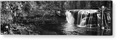 Lower Lewis River Waterfall Panorama - Black And White Acrylic Print by Mark Kiver