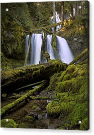 Lower Panther Creek Falls Acrylic Print