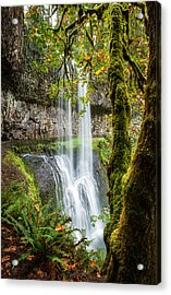 Lower South Falls Acrylic Print by Brian Bonham
